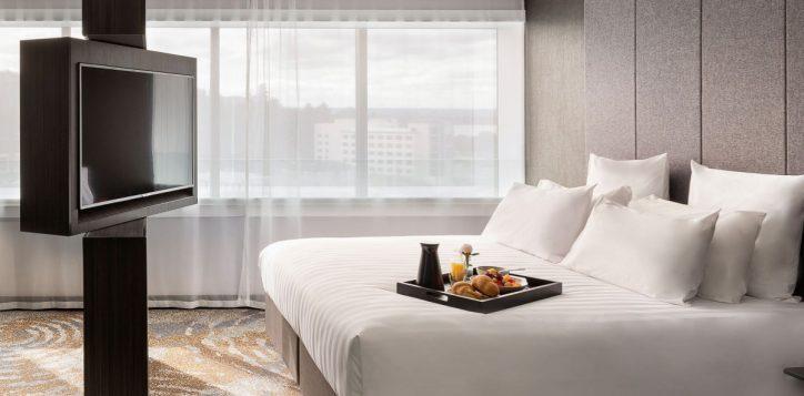 room-5-image-2-deluxe-suite-2