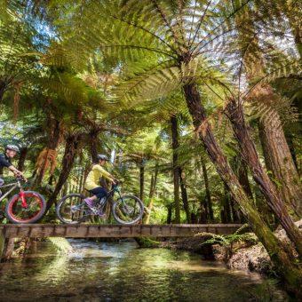 5-star-apres-bike-stay-package